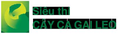Cây Cà Gai Leo
